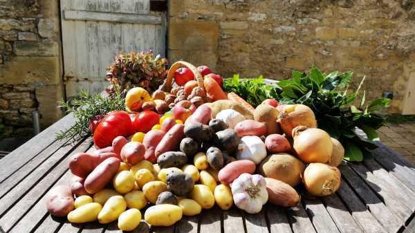 Frankreich Einkauf auf dem Dorfmarkt kochen aus liebe