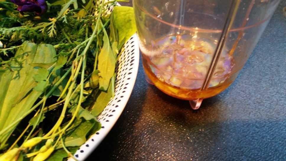 Wildkräutersalat mit Himbeerdressing kochen aus liebe
