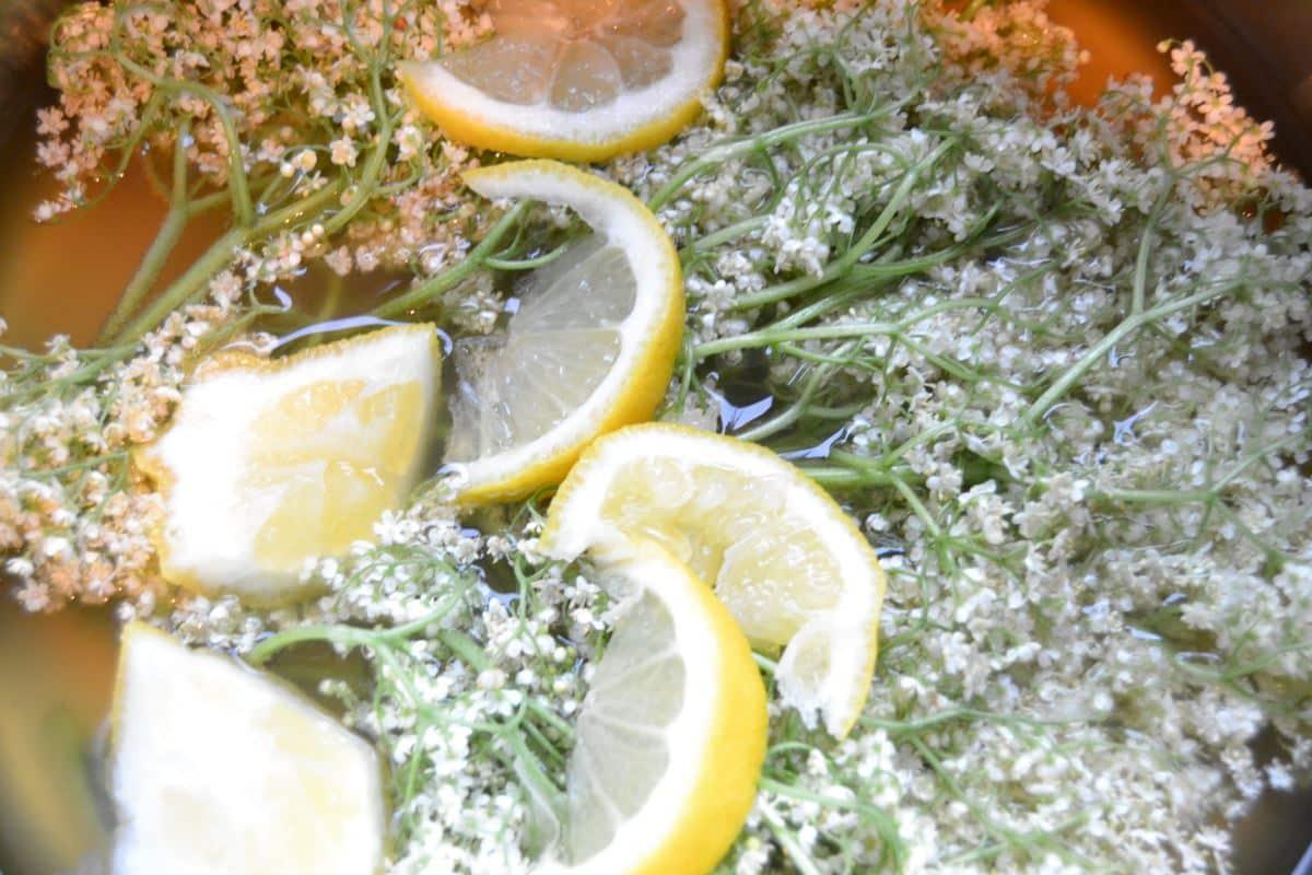 Holunderblüten , Zucker , Cidre ,Zitrone