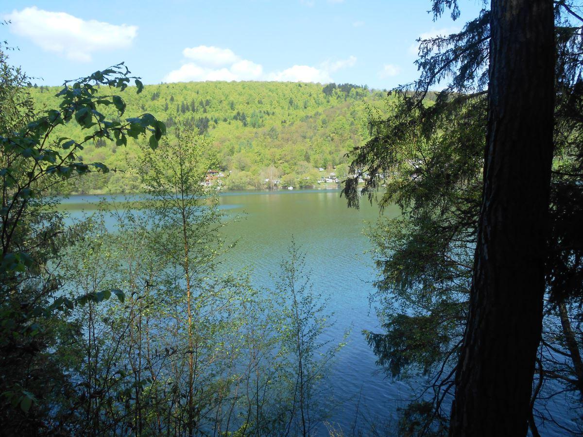 Blick aus dem Kellerwald auf den Edersee