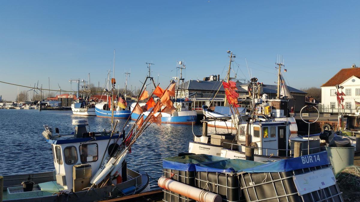 Fehmarn Hafen Fischkutter
