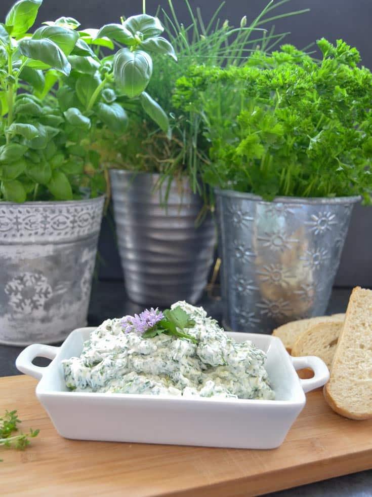 Frischkäse Dip mit Gartenkräutern