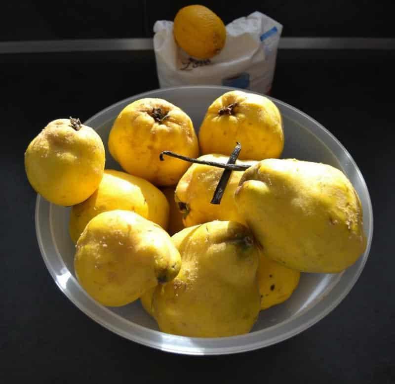 Quitten, Zitrone und Zucker