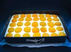Spiegeleikuchen mit Aprikosen Schmandkuchen Blech